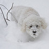 1/14/10  Walking in a WInter Wonderland